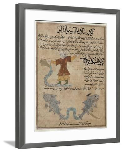 Aquarius and Pisces, the Wonders of the Creation and the Curiosities of Existence by Al-Qazwini--Framed Art Print