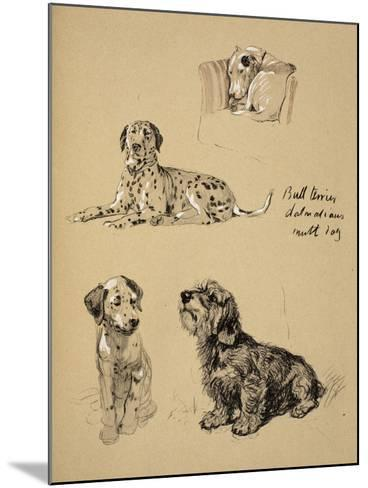 Bull Terrier, Dalmatians and Mutt Dog, 1930, Just Among Friends, Aldin, Cecil Charles Windsor-Cecil Aldin-Mounted Giclee Print