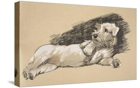 Terrier Detail, 1930, Just Among Friends, Aldin, Cecil Charles Windsor-Cecil Aldin-Stretched Canvas Print