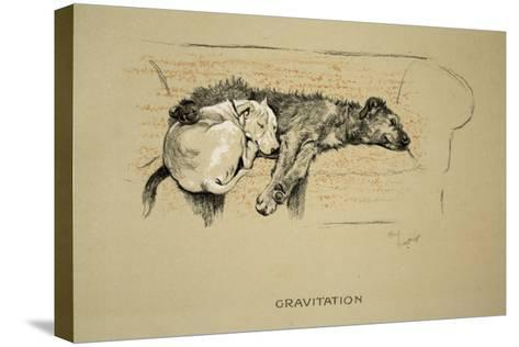 Gravitation, 1930, 1st Edition of Sleeping Partners-Cecil Aldin-Stretched Canvas Print