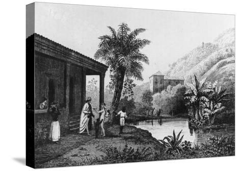 Coffee Plantation, from Bresil, Columbie et Guyanes by Ferdinand Denis and Cesar Famin 1837--Stretched Canvas Print