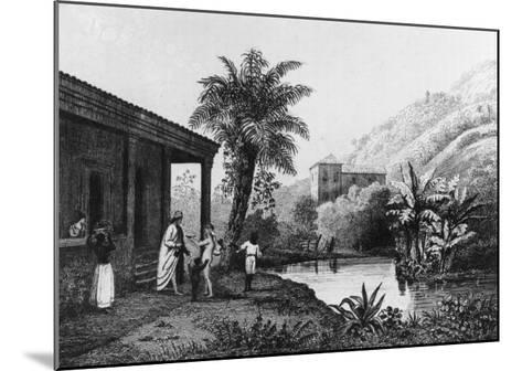 Coffee Plantation, from Bresil, Columbie et Guyanes by Ferdinand Denis and Cesar Famin 1837--Mounted Giclee Print