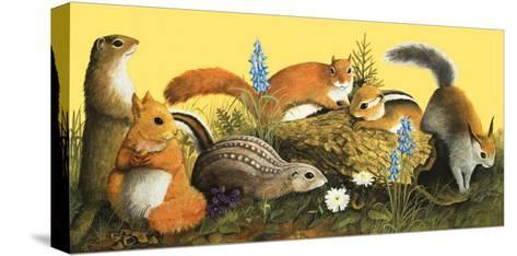 The Squirrel Family, Illustration from Once Upon a Time--Stretched Canvas Print