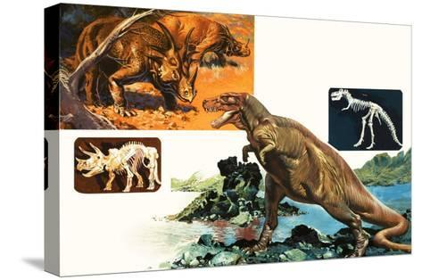 Dinosaurs and Skeletons. Stegasaurus and Tyranosaurus--Stretched Canvas Print