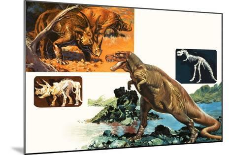 Dinosaurs and Skeletons. Stegasaurus and Tyranosaurus--Mounted Giclee Print