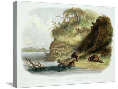 Beaver Hut on the Missouri, Plate 17, Travels in the Interior of North America-Karl Bodmer-Stretched Canvas Print