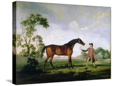 """The Duke of Ancaster's Bay Stallion """"Spectator"""", Held by a Groom, c.1762-5-George Stubbs-Stretched Canvas Print"""