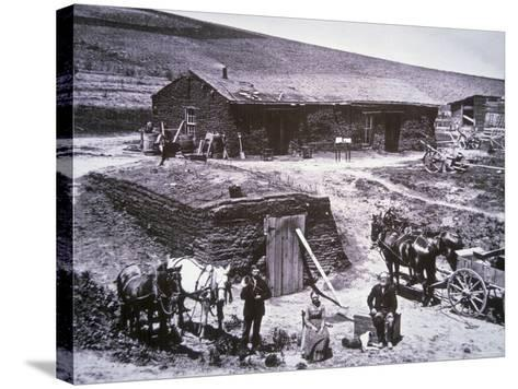 The Sod Homestead of the Barnes Family, Custer County, Nebraska, 1887--Stretched Canvas Print