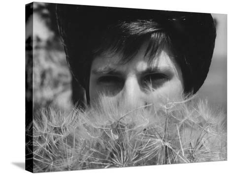 Woman's Face Hidden by Dandelions--Stretched Canvas Print