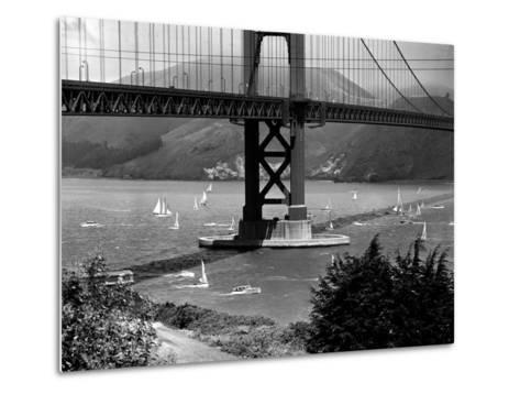 Golden Gate Bridge on Opening Day of the Yacht Season--Metal Print