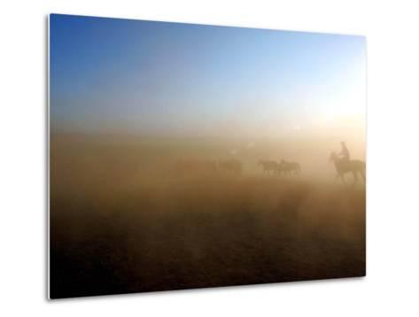 A Herd of Horses is Taken out Runs Across the Grounds Near a Temporary Race Course Ground--Metal Print