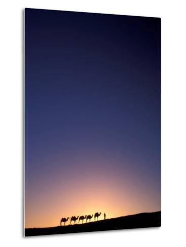 Camel Caravan Silhouette at Dawn, Silk Road, China-Keren Su-Metal Print