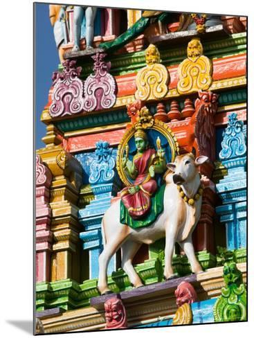 Detail of Dravidian-style Kapaleeshwarar Temple, India-Walter Bibikow-Mounted Photographic Print