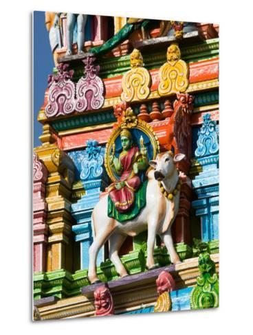 Detail of Dravidian-style Kapaleeshwarar Temple, India-Walter Bibikow-Metal Print