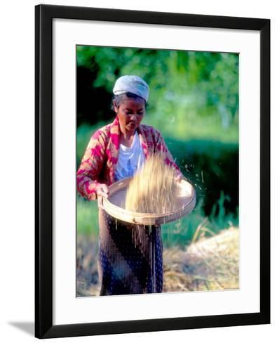Woman Separates Rice From Hulls, Bali, Indonesia-John & Lisa Merrill-Framed Art Print