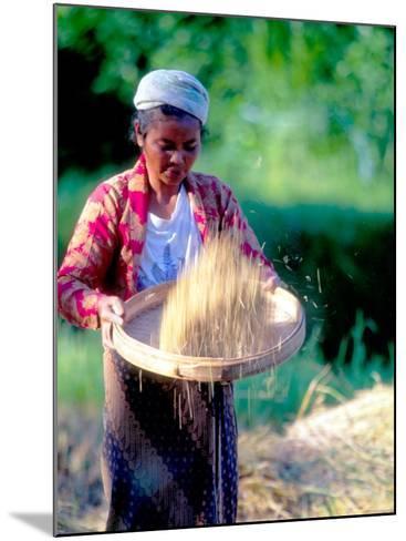 Woman Separates Rice From Hulls, Bali, Indonesia-John & Lisa Merrill-Mounted Photographic Print