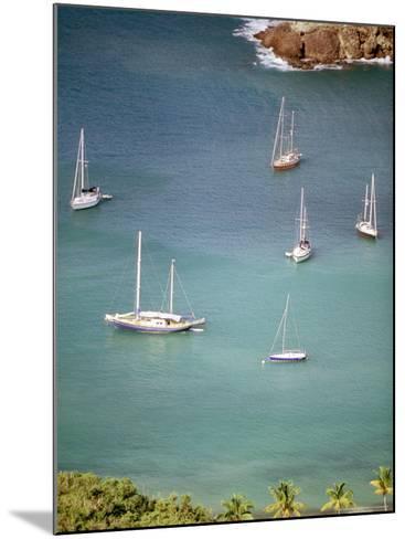 Yachts Anchor in British Harbor, Antigua, Caribbean-Alexander Nesbitt-Mounted Photographic Print