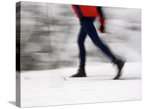 Cross Country Skiing on Spray River Trail, Banff, Alberta-Michele Westmorland-Stretched Canvas Print