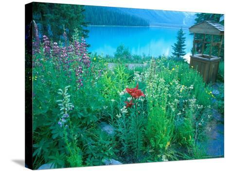 Emerald Lake, Yoho National Park, British Columbia-Rob Tilley-Stretched Canvas Print
