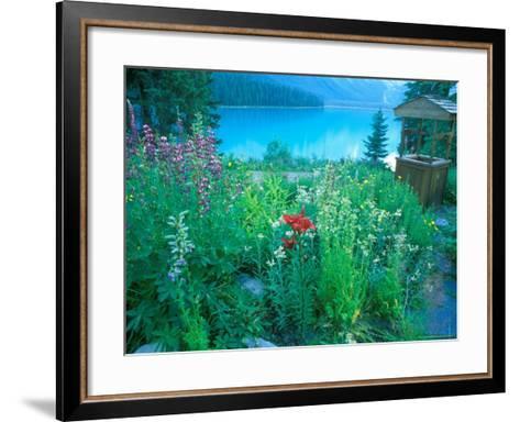 Emerald Lake, Yoho National Park, British Columbia-Rob Tilley-Framed Art Print