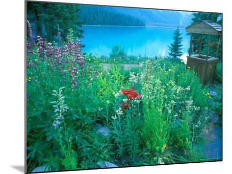 Emerald Lake, Yoho National Park, British Columbia-Rob Tilley-Mounted Photographic Print