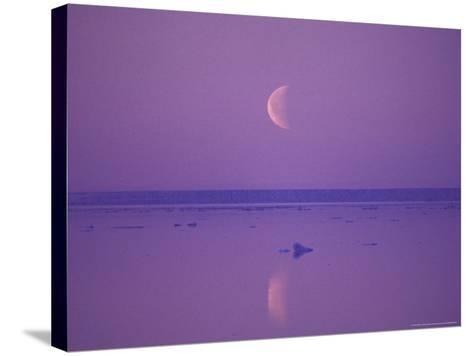 Foxe Basin, Baffin Island, Canadian Arctic, Canada-Stuart Westmoreland-Stretched Canvas Print