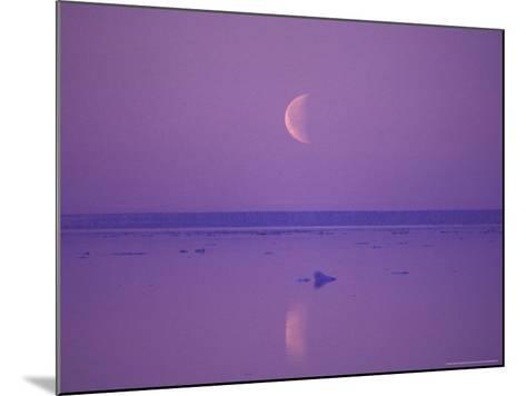 Foxe Basin, Baffin Island, Canadian Arctic, Canada-Stuart Westmoreland-Mounted Photographic Print