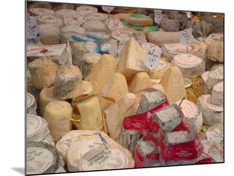 Cheese Variety in Shop, Paris, France-Lisa S^ Engelbrecht-Mounted Photographic Print