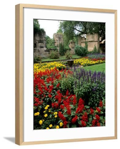 Flower Gardens in Old Town by Rhine River, St Kastor Church, Koblenz, Germany-Bill Bachmann-Framed Art Print