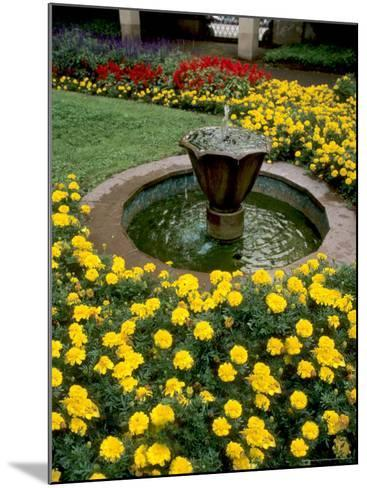 Flower Gardens in Old Town by Rhine River, St Kastor Church, Koblenz, Germany-Bill Bachmann-Mounted Photographic Print