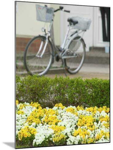 Flowers and Bicycle, Warnemunde, Germany-Russell Young-Mounted Photographic Print