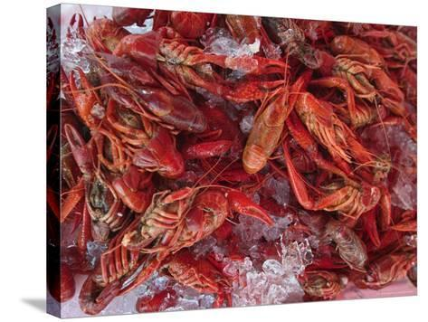 Crayfish in Bergen's Fish Market, Norway-Russell Young-Stretched Canvas Print