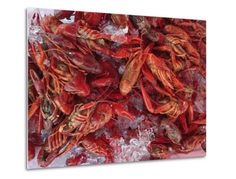 Crayfish in Bergen's Fish Market, Norway-Russell Young-Metal Print