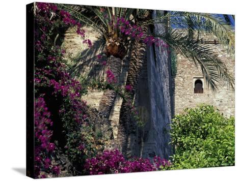 Plams, Flowers and Ramparts of Alcazaba, Malaga, Spain-John & Lisa Merrill-Stretched Canvas Print