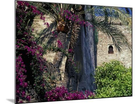 Plams, Flowers and Ramparts of Alcazaba, Malaga, Spain-John & Lisa Merrill-Mounted Photographic Print