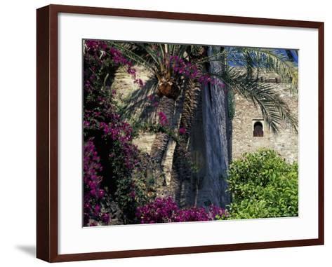 Plams, Flowers and Ramparts of Alcazaba, Malaga, Spain-John & Lisa Merrill-Framed Art Print