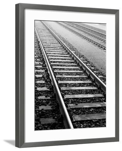 Train Tracks, Zurich, Switzerland-Walter Bibikow-Framed Art Print