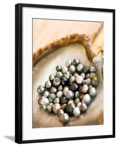 Black Pearl Farming at Hinano Pearl Farm, Fakarava, Tuamotus, French Polynesia-Michele Westmorland-Framed Art Print