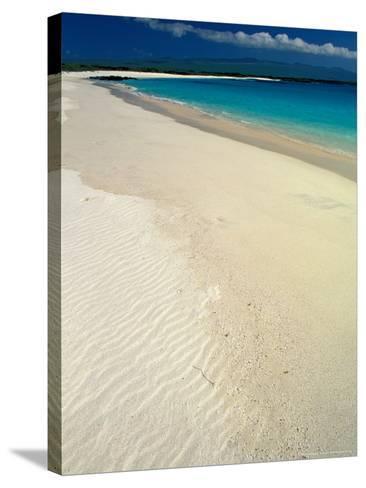 White Sand Beach, San Cristobal Island, Galapagos Islands, Ecuador-Jack Stein Grove-Stretched Canvas Print