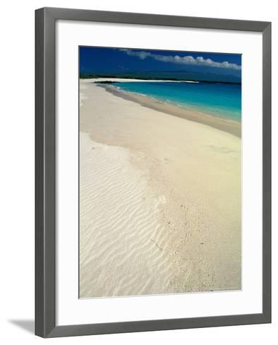 White Sand Beach, San Cristobal Island, Galapagos Islands, Ecuador-Jack Stein Grove-Framed Art Print