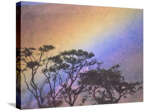 Rainbow over Rural Valley, Guacimal, Costa Rica-Michele Westmorland-Stretched Canvas Print