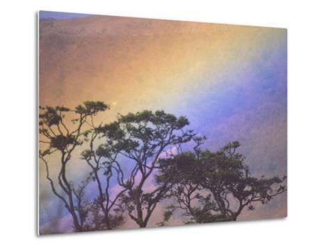 Rainbow over Rural Valley, Guacimal, Costa Rica-Michele Westmorland-Metal Print