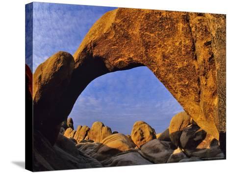 Arch Rock, Joshua Tree National Park, California, USA-Chuck Haney-Stretched Canvas Print