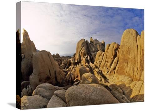 Jumbled Rocks, Joshua Tree National Park, California, USA-Chuck Haney-Stretched Canvas Print