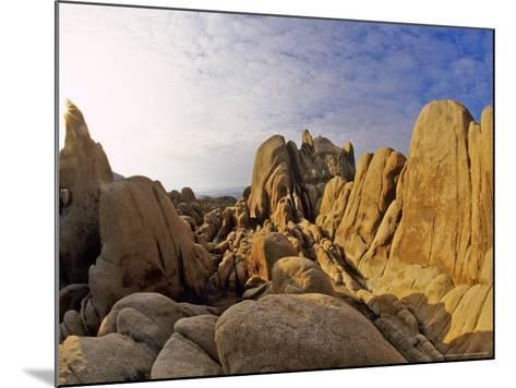 Jumbled Rocks, Joshua Tree National Park, California, USA-Chuck Haney-Mounted Photographic Print