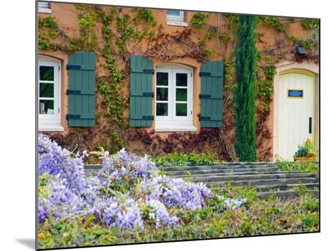 Viansa Winery, Sonoma Valley, California, USA-Julie Eggers-Mounted Photographic Print