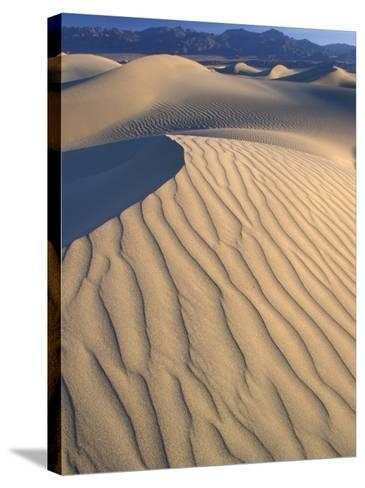 Mesquite Flats Sand Dunes with Wind Ripples at Sunrise, Death Valley National Park, California, USA-Jamie & Judy Wild-Stretched Canvas Print