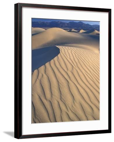 Mesquite Flats Sand Dunes with Wind Ripples at Sunrise, Death Valley National Park, California, USA-Jamie & Judy Wild-Framed Art Print