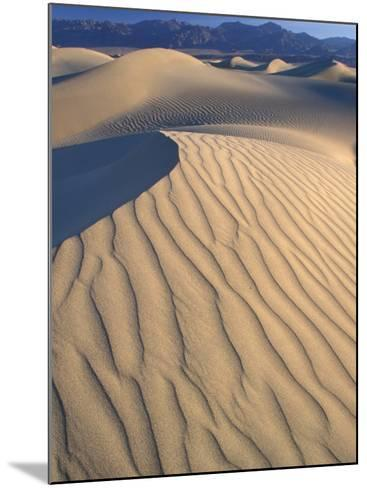 Mesquite Flats Sand Dunes with Wind Ripples at Sunrise, Death Valley National Park, California, USA-Jamie & Judy Wild-Mounted Photographic Print