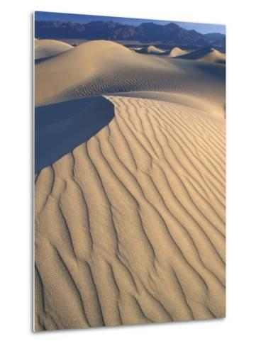 Mesquite Flats Sand Dunes with Wind Ripples at Sunrise, Death Valley National Park, California, USA-Jamie & Judy Wild-Metal Print